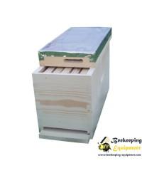 Five frames hive