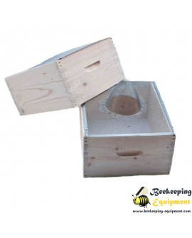 Wespen schlüpfen